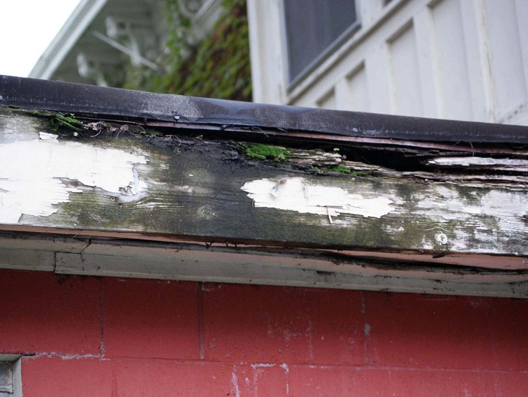 Gutter backups can cause the wood on your house to rot and decay.